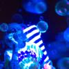 amaza-uv-bubble-mixture-8462-p