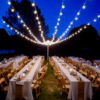 large-bistro-lights-outdoor-dinner1