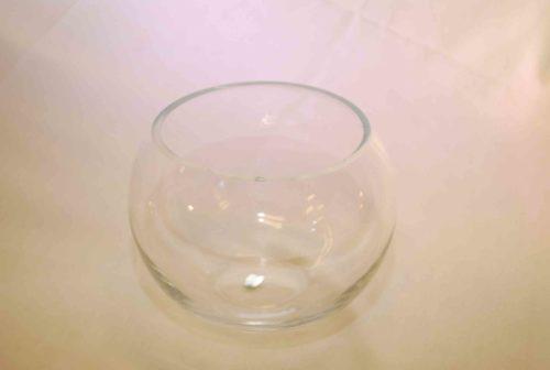 large-fishbowl